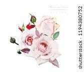 bouquet of roses  watercolor ...   Shutterstock .eps vector #1194380752
