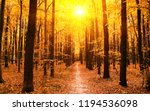 autumn trees in the forest   Shutterstock . vector #1194536098