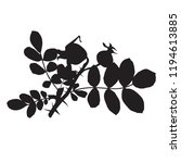dogrose silhouette vector... | Shutterstock .eps vector #1194613885