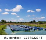 the farming of freshwater... | Shutterstock . vector #1194622345