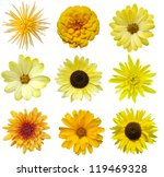 Collage Of Isolated Yellow...