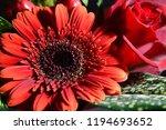 red flowers bouquet | Shutterstock . vector #1194693652