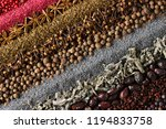 various spices and herbs are... | Shutterstock . vector #1194833758
