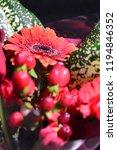 red gerbera bouquet | Shutterstock . vector #1194846352