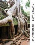 ta phrom in angkor  cambodia | Shutterstock . vector #1194956242