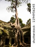 ta phrom in angkor  cambodia | Shutterstock . vector #1194956245