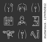 gynecology chalk icons set.... | Shutterstock .eps vector #1194965812