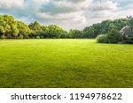 the sun shining through a tree... | Shutterstock . vector #1194978622