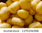 potatoes put up for sale on the ... | Shutterstock . vector #1195246588