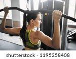 Beautiful Slim Girl In The Gym