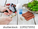 florist at work  how to make... | Shutterstock . vector #1195273552