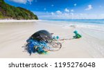 dead endangered sea turtle... | Shutterstock . vector #1195276048