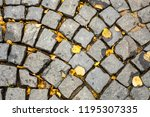 cobbles with autumn leaves.... | Shutterstock . vector #1195307335