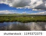 flower lake in aba  sichuan... | Shutterstock . vector #1195372375