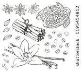 set of kitchen spices. vanilla  ...   Shutterstock .eps vector #1195454812