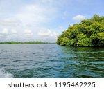 nice lake view | Shutterstock . vector #1195462225