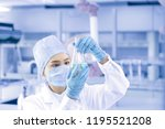 female scientist looking at the ... | Shutterstock . vector #1195521208