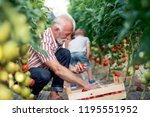 grandfather and his grandson in ... | Shutterstock . vector #1195551952