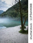 misty confluence of soca and... | Shutterstock . vector #1195644088