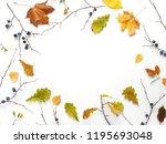 autumn background  frame.... | Shutterstock . vector #1195693048