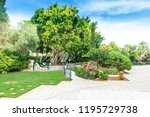 saint petersburg  usa   jun 16  ... | Shutterstock . vector #1195729738