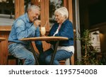 cheerful old couple sitting at... | Shutterstock . vector #1195754008
