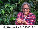 happy male farmer with coffee... | Shutterstock . vector #1195800172