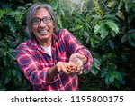 happy male farmer with coffee... | Shutterstock . vector #1195800175