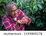 happy male farmer with coffee... | Shutterstock . vector #1195800178