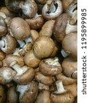 mushrooms champignons in black...   Shutterstock . vector #1195899985