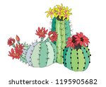 three varieties of cacti with... | Shutterstock .eps vector #1195905682