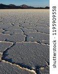salar de uyuni  giant salt...   Shutterstock . vector #1195909558