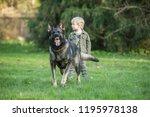 gray working line german... | Shutterstock . vector #1195978138