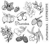 berries set blueberry... | Shutterstock .eps vector #1195983595