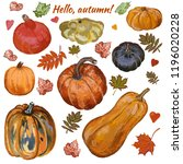 autumn pumpkin set | Shutterstock . vector #1196020228
