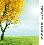 autumn trees | Shutterstock . vector #11960269