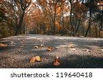Autumn Mountain Roads