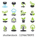 evolution of seeds to a big... | Shutterstock .eps vector #1196678095
