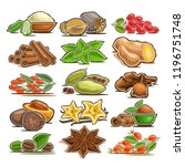 vector set of indian spices  15 ... | Shutterstock .eps vector #1196751748