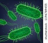 pathogenic bacteria  virus... | Shutterstock .eps vector #1196789455