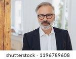 portrait of elegant mature... | Shutterstock . vector #1196789608