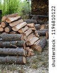pile of wood ready for the... | Shutterstock . vector #1196810122