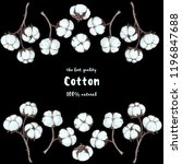 cotton hand drawn sketch.... | Shutterstock .eps vector #1196847688