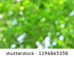 nature green bokeh background... | Shutterstock . vector #1196865358