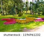 garden flowers landscape.... | Shutterstock . vector #1196961232
