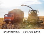 truck and harvester harvest... | Shutterstock . vector #1197011245