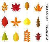 set of colorful autumn leaves... | Shutterstock .eps vector #1197011458