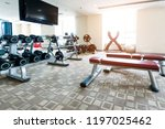 interior view of modern gym... | Shutterstock . vector #1197025462