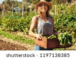 portrait of beautiful female... | Shutterstock . vector #1197138385