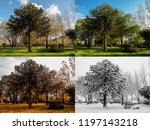 Small photo of Spring, Summer, Fall and Winter. Four seasons photographed in the same park, from the exact same location, in Blaina, South Wales UK.